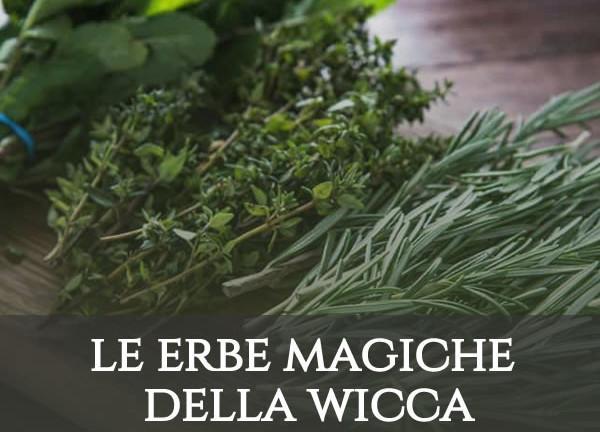 erbe magiche wicca