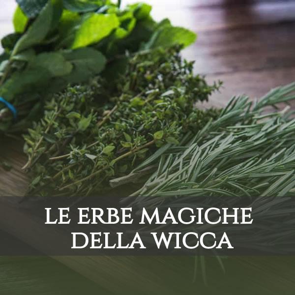 Le erbe magiche nella Wicca